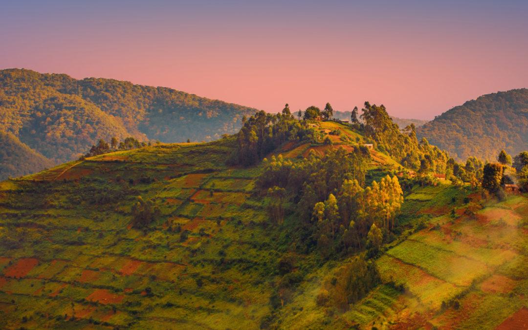 Meeting the Prophets in Rwanda